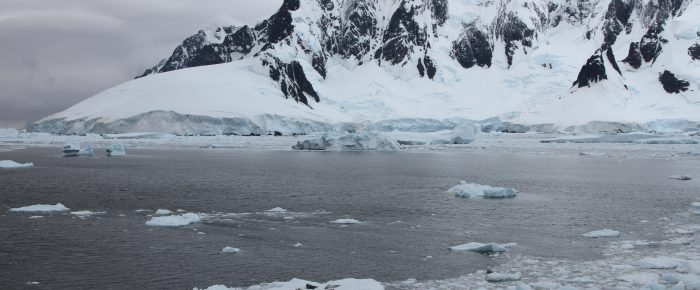 Biodiversity prospects for Antarctica
